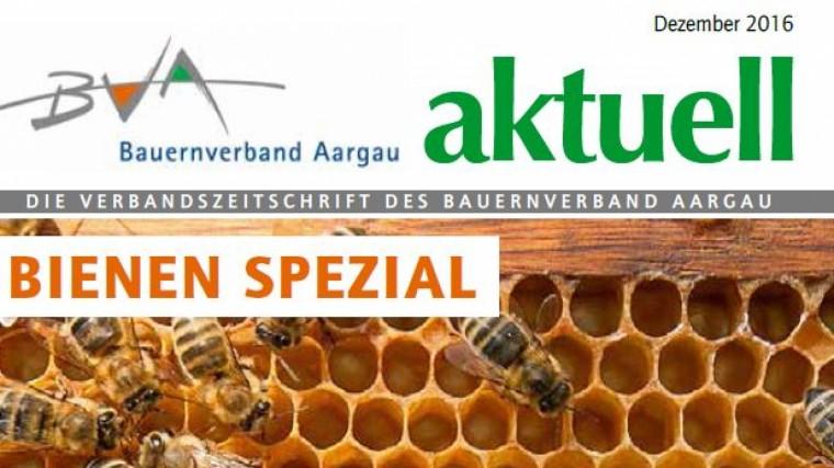 Beste Spielothek in Bienen finden